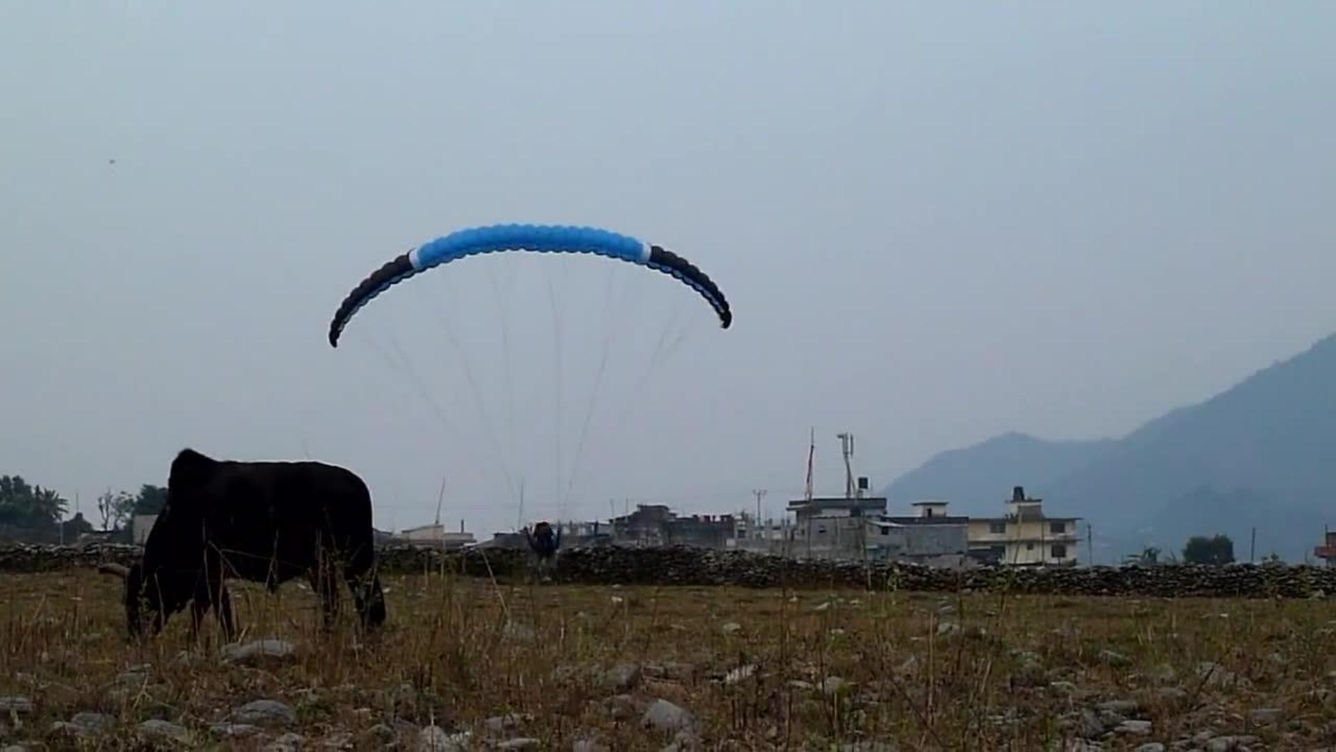 Paraglider Has Crash Landing | Jukin Media Inc