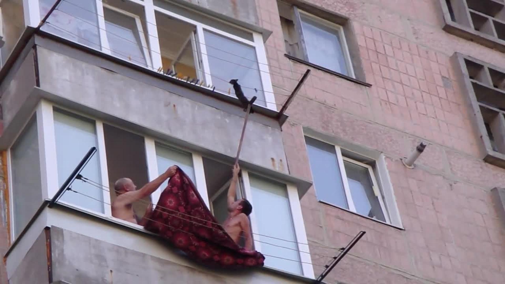 "Забавное спасение зацепившегося за веревки на балконе кота ""."