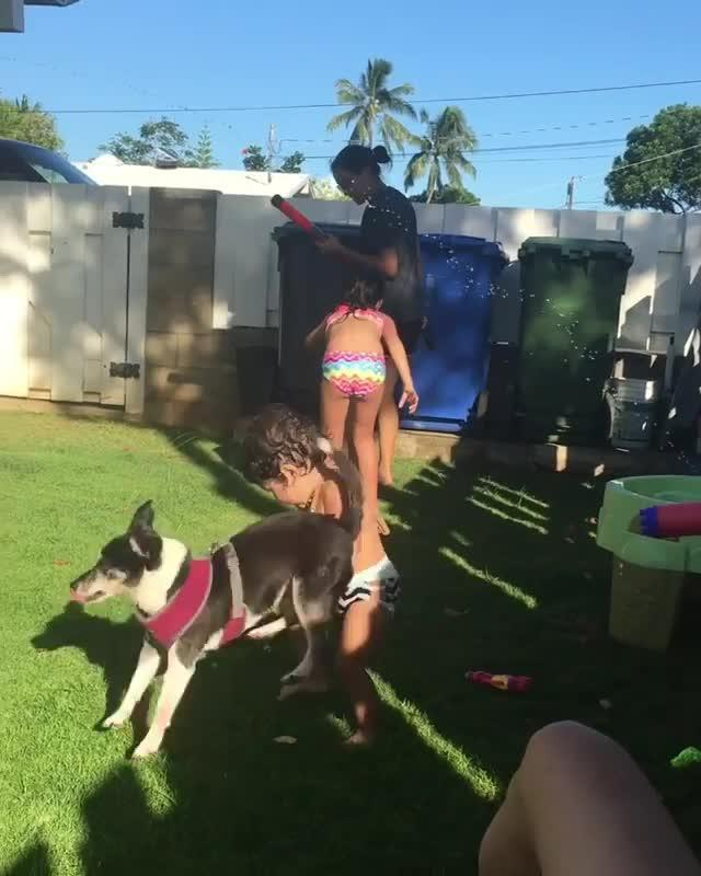 dog humps girl