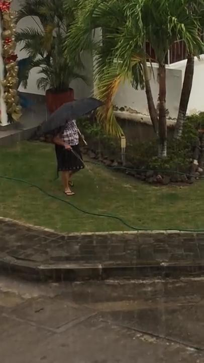 Woman Waters Grass While It Rains | Jukin Media Inc